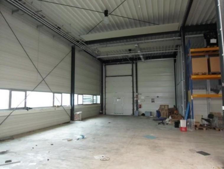 Kaufobjekt, Betriebsobjekt/Firmensitz Gesamtgrund ca. 10.300 m²- Bereich Bruck/Leitha und Neusiedl am See (Objekt Nr. 050/01567)