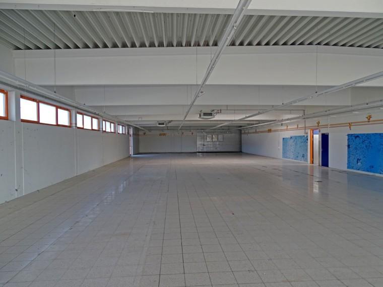 Miete - 600 m²  IDEALE VERKAUFSFLÄCHE - Bereich Gramatneusiedl/Ebergassing (Objekt Nr. 050/01873)