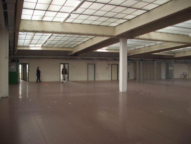 Miete, Firmensitz mit ca. 900 m² in 1230 Wien, Bereich Perfektastraße (Objekt Nr. 050/01874)