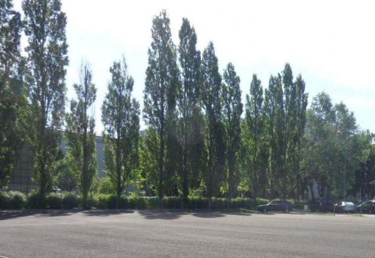 Miete, SELTENHEIT - asphaltierte FREIFLÄCHE im Industriegebiet Strebersdorf (Objekt Nr. 050/01882)